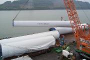 風力・バイオマス発電プロジェクト